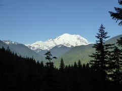 View of Mt. Rainier from the trail
