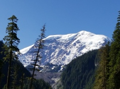 Willis Wall on the north side of Rainier, with Carbon Glacier at the bottom