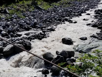 Carbon River under the bridge