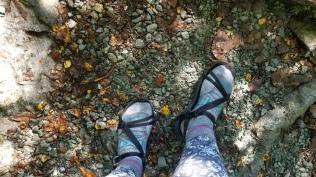 Hiked 11.5 miles in Teva sandals