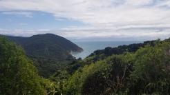 Looking down on Mutton Cove, Abel Tasman