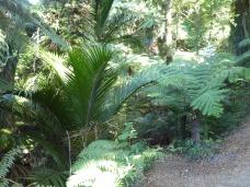 Beautiful flora and fauna!