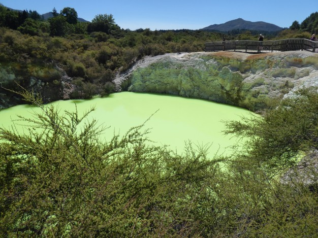 Lime green water
