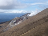 very active steam vents